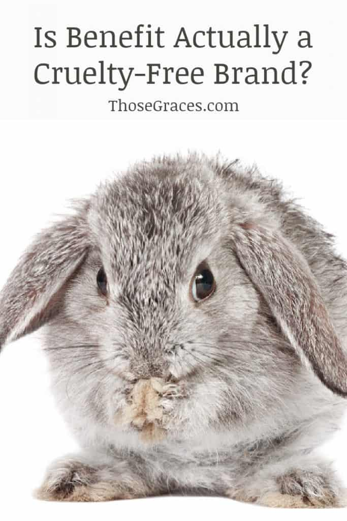 grey bunny with text