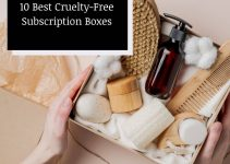 10 Best Cruelty-Free Subscription Boxes for 2021 (Reviews)