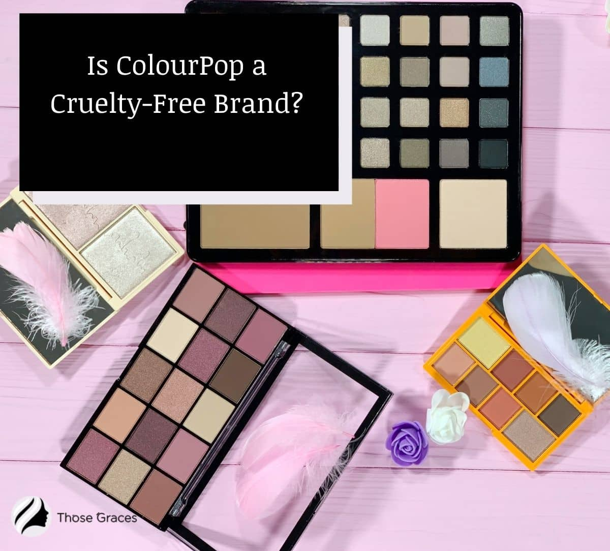 makeup shadow palettes by ColourPop: Is ColourPop Cruelty-Free?