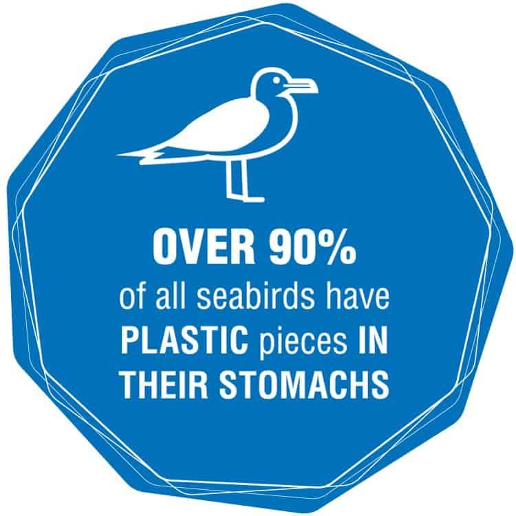 zero waste beauty plastics fact 2
